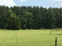 Home for sale: 0 Josiah Morgan Rd., Clyo, GA 31303