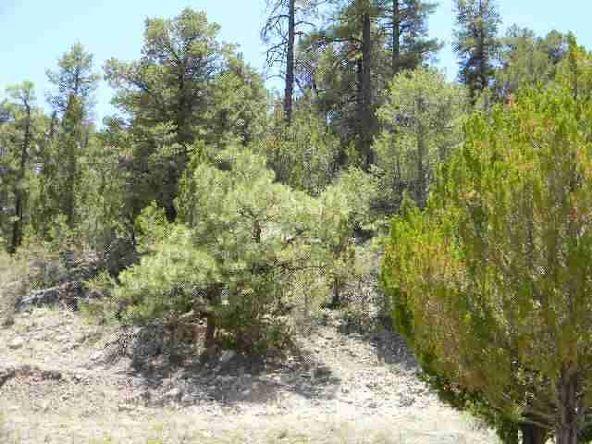 1855 Hwy. 260, Heber, AZ 85928 Photo 3