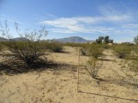 Home for sale: Lot 91 W. William Rd., Aguila, AZ 85320