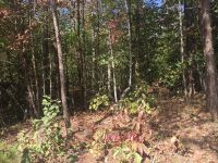 Home for sale: 0 Camp Creek Rd., Whittier, NC 28789