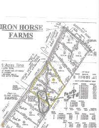 Home for sale: 5 Iron Horse Trl, Lula, GA 30554