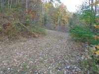 Home for sale: 560 Lacey Fern Ridge, Sylva, NC 28779