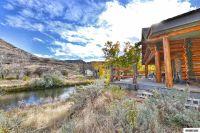 Home for sale: 31200 Cantlon Dr., Wadsworth, NV 89442