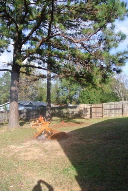 101 Narvie Lee Henry Dr., Evergreen, AL 36401 Photo 7