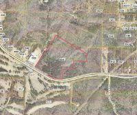 Home for sale: 638 Golf Course Rd., Tallapoosa, GA 30176