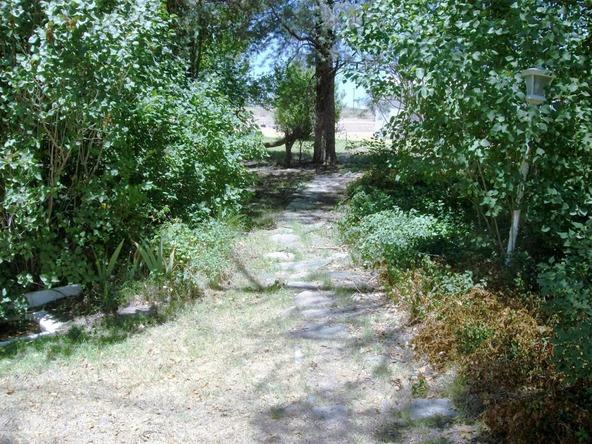 10501 N. Harris, Elfrida, AZ 85610 Photo 21