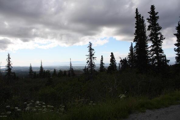 1231 Sultana Ct., Anchorage, AK 99516 Photo 36
