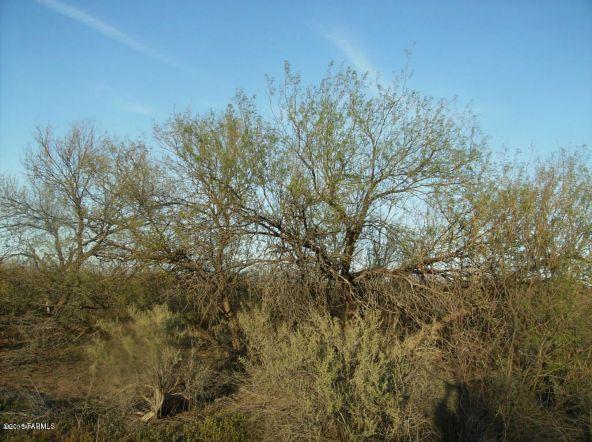 8420 N. Maggies Farm, Tucson, AZ 85743 Photo 7
