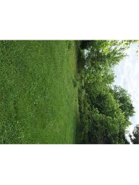Home for sale: 143 Colgate, Irwin, PA 15642