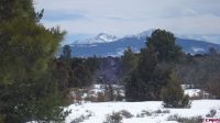 Home for sale: Lot 9 Nelson Ditch Rd., Norwood, CO 81423