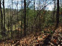Home for sale: Lot #13, Pinchot, Cashiers, NC 28717