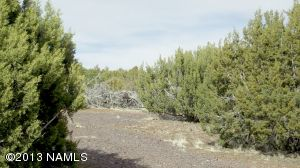 10705 N. Falcon Ridge, Williams, AZ 86046 Photo 9