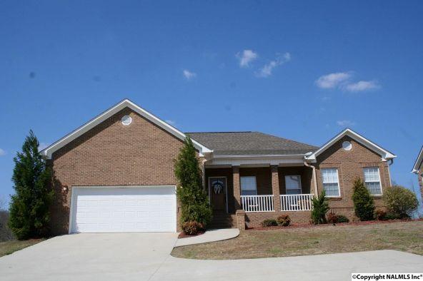 352 Tara Dr., Guntersville, AL 35976 Photo 21