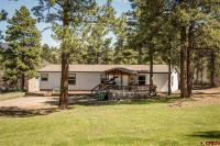 Home for sale: 246 Weasel Dr., Pagosa Springs, CO 81147