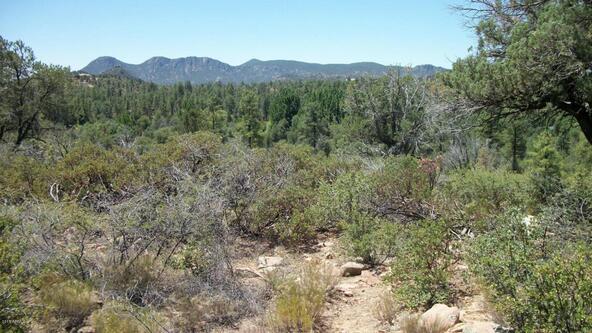 509 N. Chaparral Pines Dr., Payson, AZ 85541 Photo 10