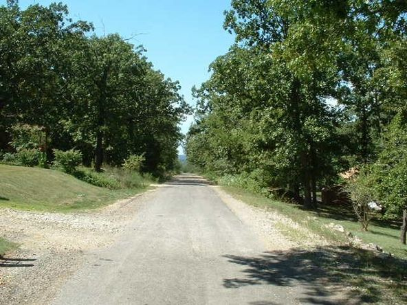 00 Ridge Rd., Lead Hill, AR 72644 Photo 4