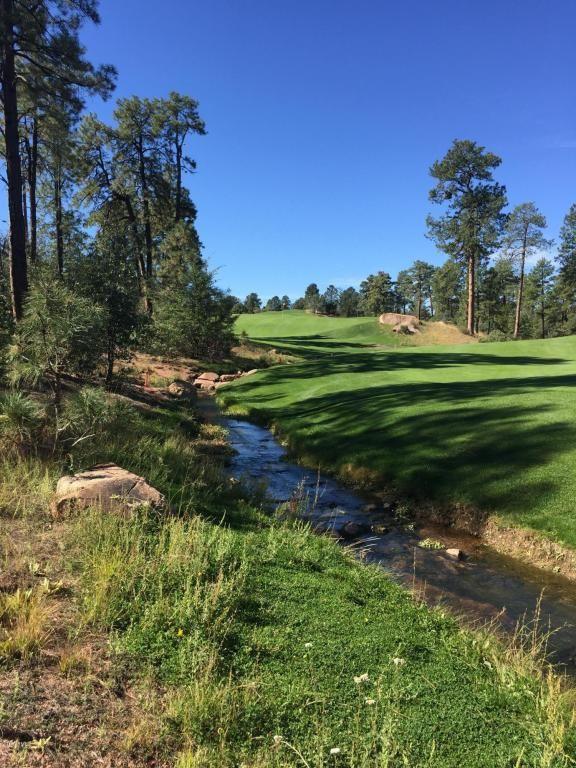 602 S. Pine Strm Stream, Payson, AZ 85541 Photo 2