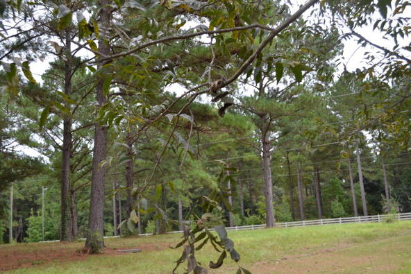 1723 Omussee, Dothan, AL 36303 Photo 22