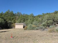 Home for sale: 91/136 Knight Ln., Cotopaxi, CO 81223