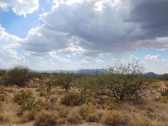 16705 S. Sierrita Mountain, Tucson, AZ 85736 Photo 18