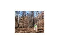 Home for sale: Lot 20 Allenwood Dr., Surgoinsville, TN 37873