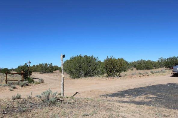 7209 N. Hwy. 191 --, Sanders, AZ 86512 Photo 5