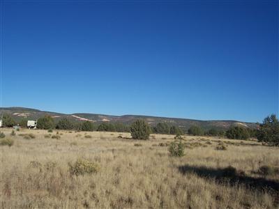 1357 W. Pinto Dr., Ash Fork, AZ 86320 Photo 13
