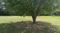 Home for sale: N.W. Twin Oaks Dr., Bristol, FL 32321