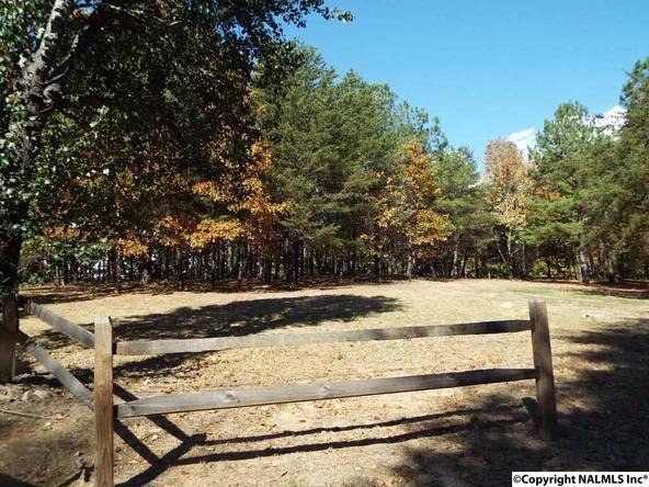 15 S. County Rd. 89, Mentone, AL 35984 Photo 12