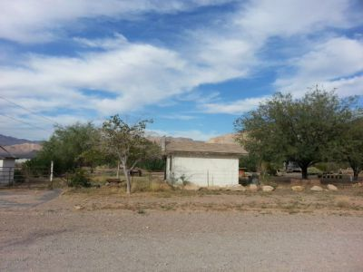 204 N. Desert Springs Rd., Littlefield, AZ 86432 Photo 2
