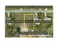 Home for sale: 1428 11th Terrace, Cape Coral, FL 33990