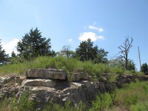 2924 Shepherd Of The Hills Expy, Branson, MO 65616 Photo 2