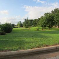 Home for sale: Lot 1 West Delaina Dr., Fair Grove, MO 65648
