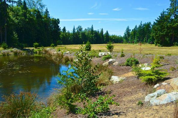 8620 Drayton View Ln., Blaine, WA 98230 Photo 7