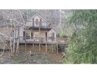 Home for sale: 231 Clarktown, Roan Mountain, TN 37687