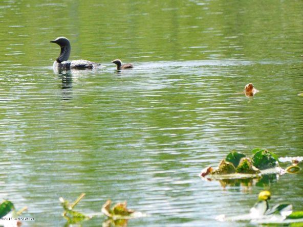 13752 W. Airigin Dr., Big Lake, AK 99652 Photo 14