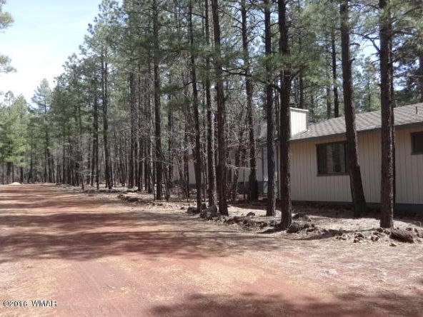 6126 Buck Springs Rd., Pinetop, AZ 85935 Photo 140