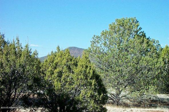 7217 N. Audrey Way, Williams, AZ 86046 Photo 22