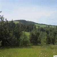 Home for sale: Nna Flannigan Creek Rd., Viola, ID 83872