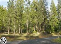 Home for sale: Grey Owl Ct., Twain Harte, CA 95383
