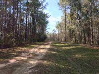 Home for sale: E. 4th Ct., Greenville, FL 32331