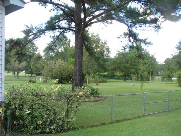 1491 Ashford Rd., Ashford, AL 36312 Photo 41