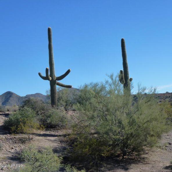 13 N. Blue Coyote Trail, Fort Mcdowell, AZ 85264 Photo 11