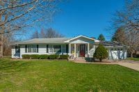 Home for sale: 1731 Fairside Dr., Sandwich, IL 60548