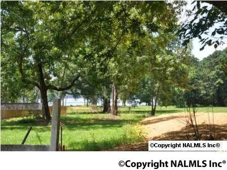 580 Howell Rd., Guntersville, AL 35976 Photo 36
