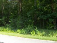 Home for sale: 00 Thomas Mill Rd., Easley, SC 29640