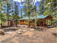 Home for sale: 1356 N. Crystal Rd., Lake George, CO 80827