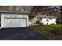 Home for sale: 908 Chestnut Ln., Vestal, NY 13850