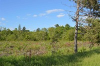 Home for sale: Suhs Rd., Waupaca, WI 54981