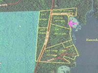 Home for sale: Lot 2 Oneida Lake Rd., Rhinelander, WI 54501